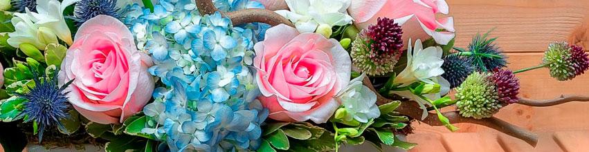 Flori de sezon