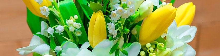 Flori pentru 1 si 8 Martie