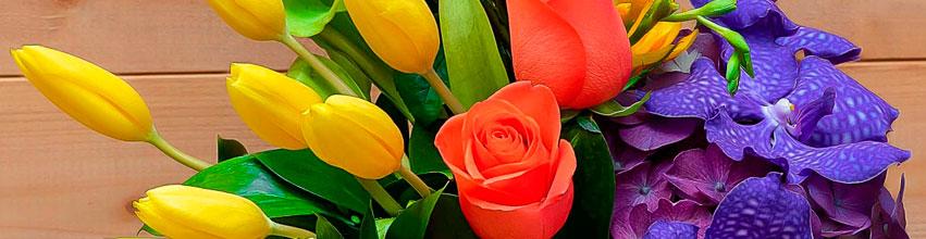 Flori pentru Paste