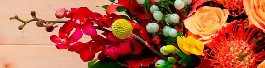 Flori pentru onomastica