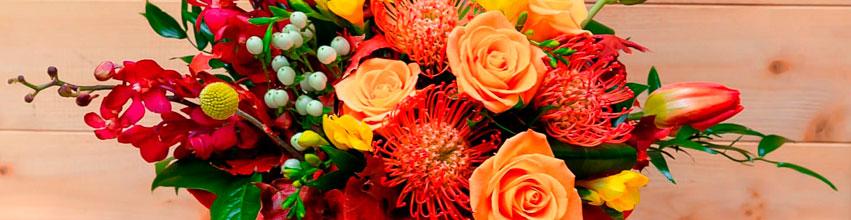 Flori pentru sotie