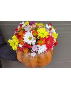 Aranjament in dovleac cu flori de toamna