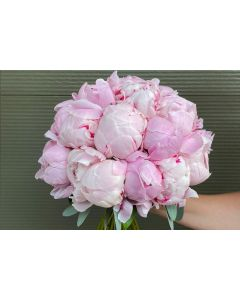 Buchet mireasa 25 bujori roz