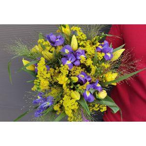 OFERTA Buchet cu lalele frezii irisi si solidago - 25 flori