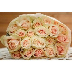 Buchet de 19 trandafiri roz pal Misterious Love