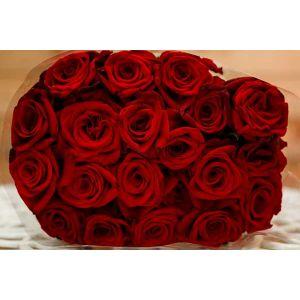 Buchet de 19 trandafiri rosii Fire on the Floor