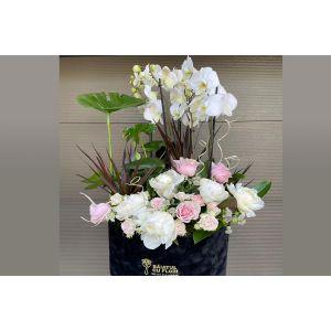 Ghiveci Orhidee bujori si trandafiri